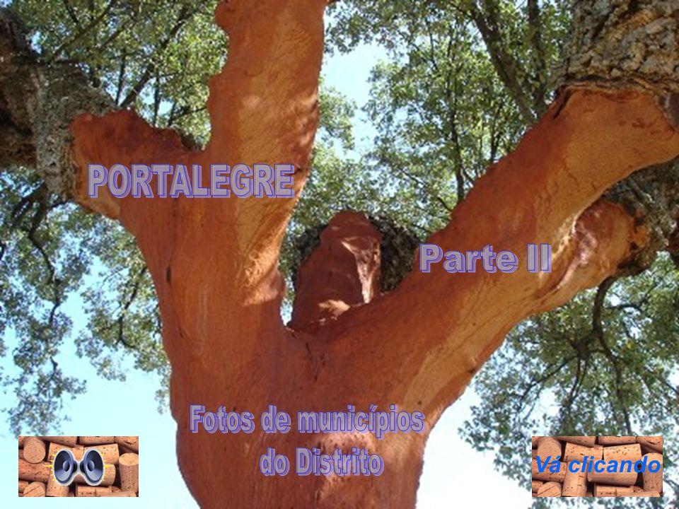 Igreja do Calvário Igreja Nª Sª da Conceição Ponte Romana Monforte