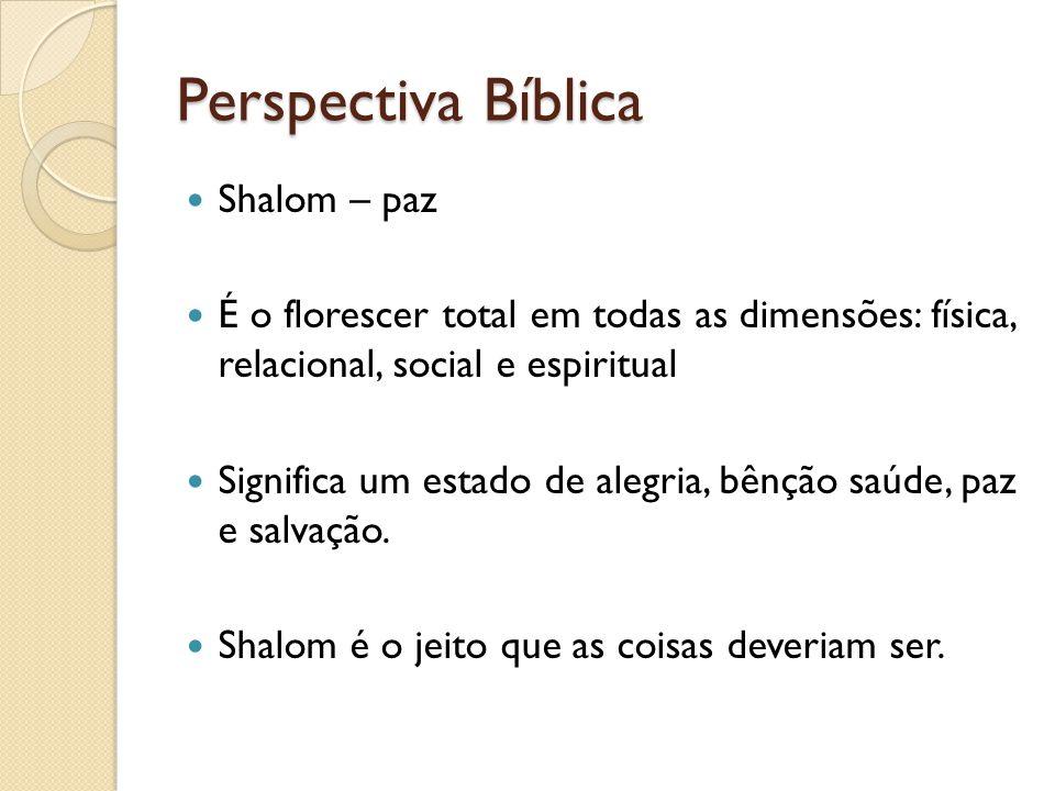 Perspectiva Bíblica Shalom – paz É o florescer total em todas as dimensões: física, relacional, social e espiritual Significa um estado de alegria, bênção saúde, paz e salvação.