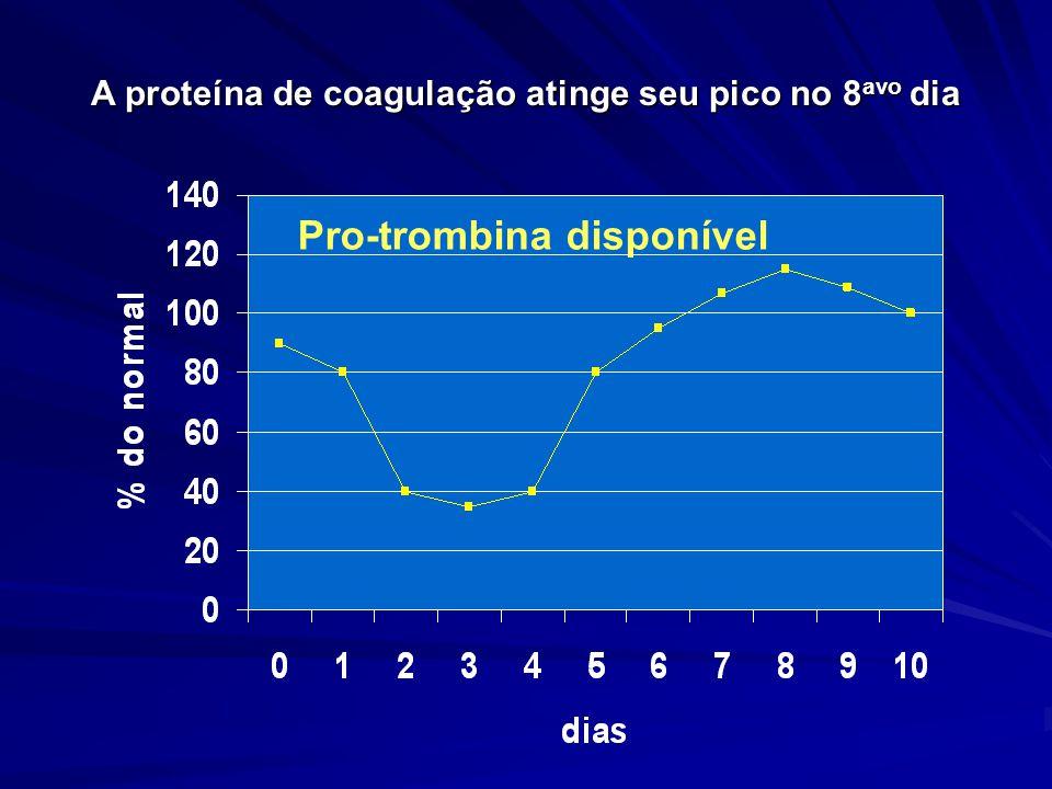 A proteína de coagulação atinge seu pico no 8 avo dia Pro-trombina disponível