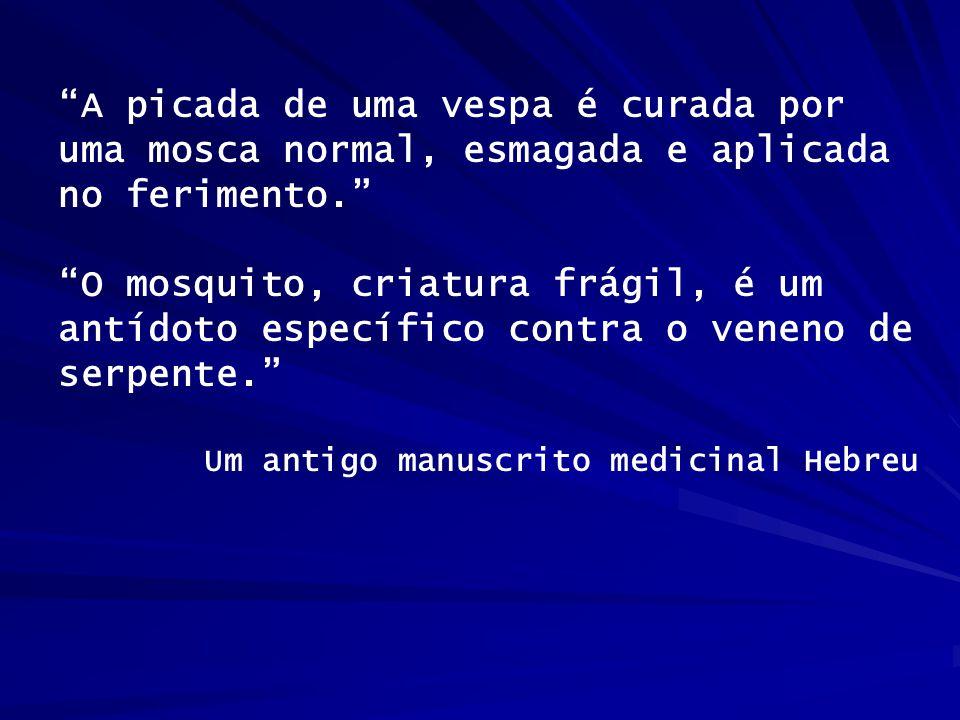 """""""A picada de uma vespa é curada por uma mosca normal, esmagada e aplicada no ferimento."""" """"O mosquito, criatura frágil, é um antídoto específico contra"""