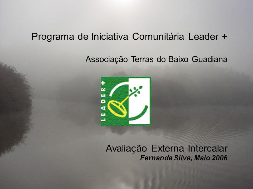 Programa de Iniciativa Comunitária Leader + Associação Terras do Baixo Guadiana Avaliação Externa Intercalar Fernanda Silva, Maio 2006