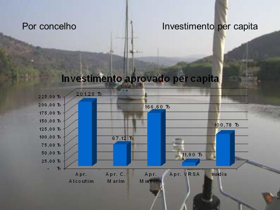Por concelhoInvestimento per capita