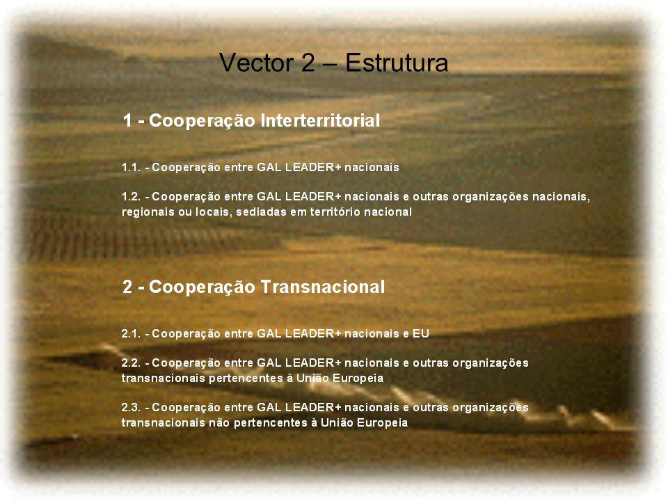 Vector 2 – Estrutura