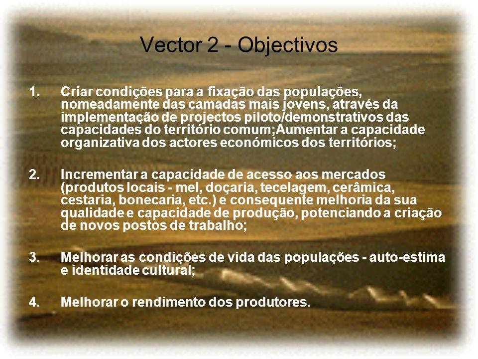 Vector 2 - Objectivos 1.Criar condições para a fixação das populações, nomeadamente das camadas mais jovens, através da implementação de projectos pil