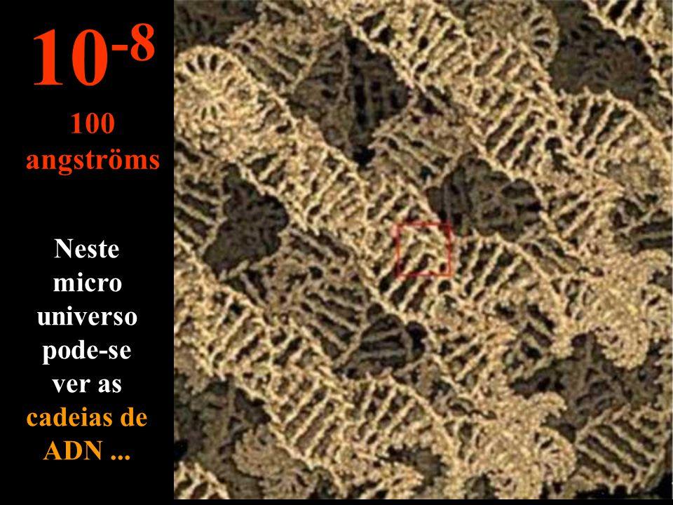 Mais pequeno que o mícron... vê-se os cromossomas 10 -7 1.000 angströms