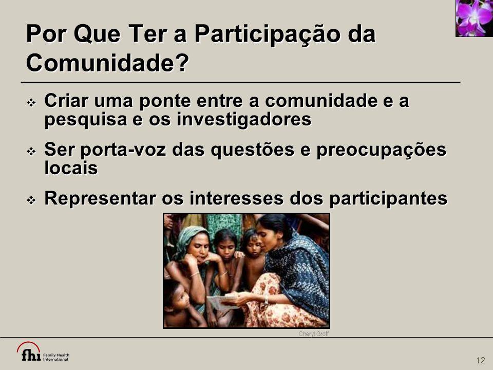 12 Por Que Ter a Participação da Comunidade?  Criar uma ponte entre a comunidade e a pesquisa e os investigadores  Ser porta-voz das questões e preo