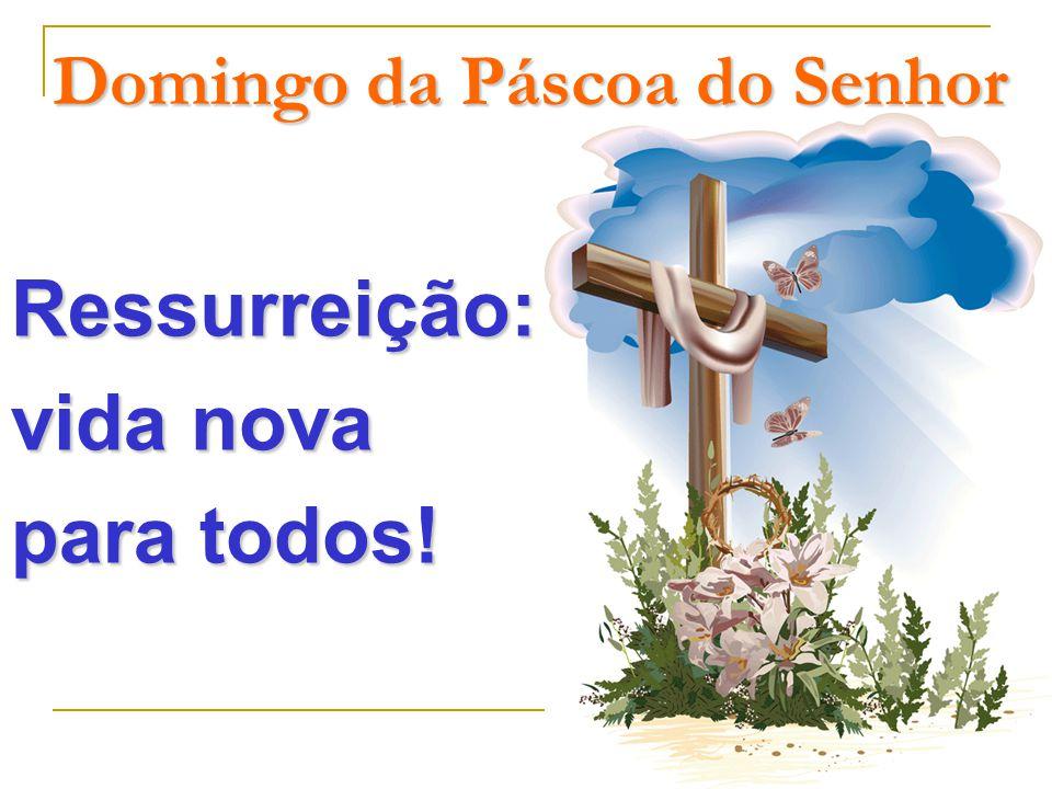 Domingo da Páscoa do Senhor Ressurreição: vida nova para todos!