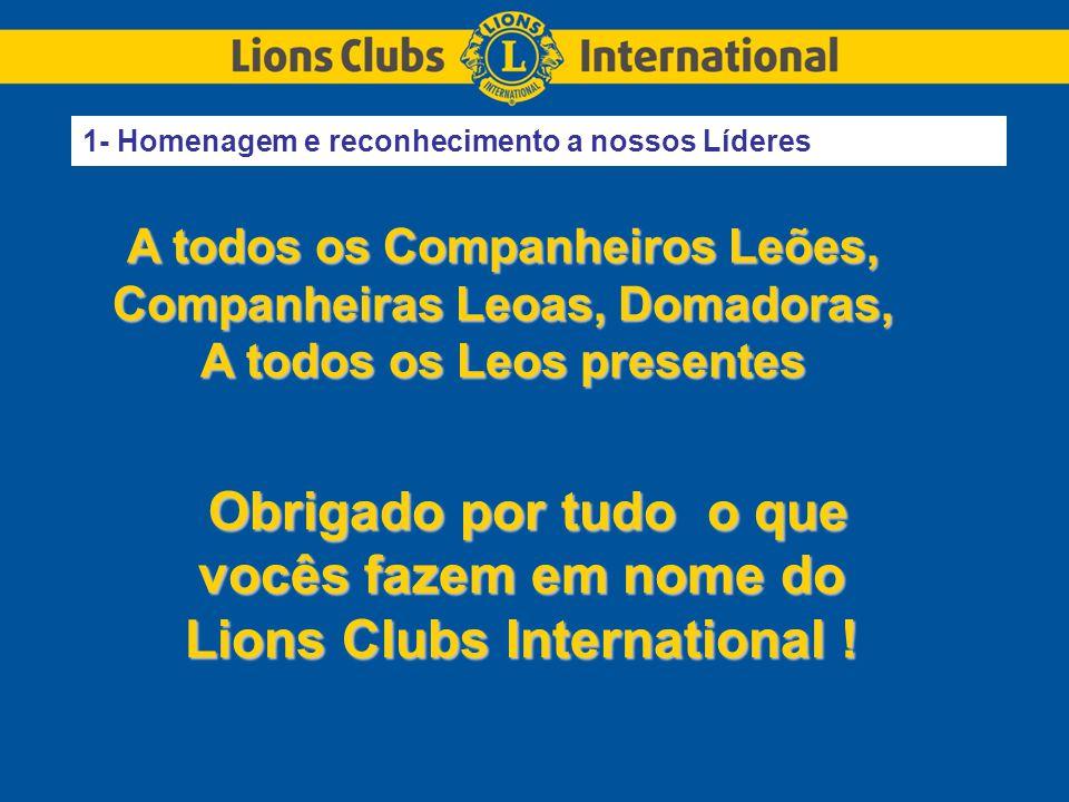 Obrigado por tudo o que vocês fazem em nome do Lions Clubs International .
