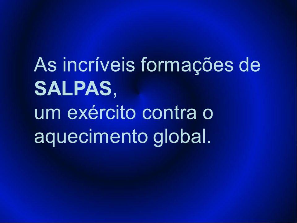 As incríveis formações de SALPAS, um exército contra o aquecimento global.