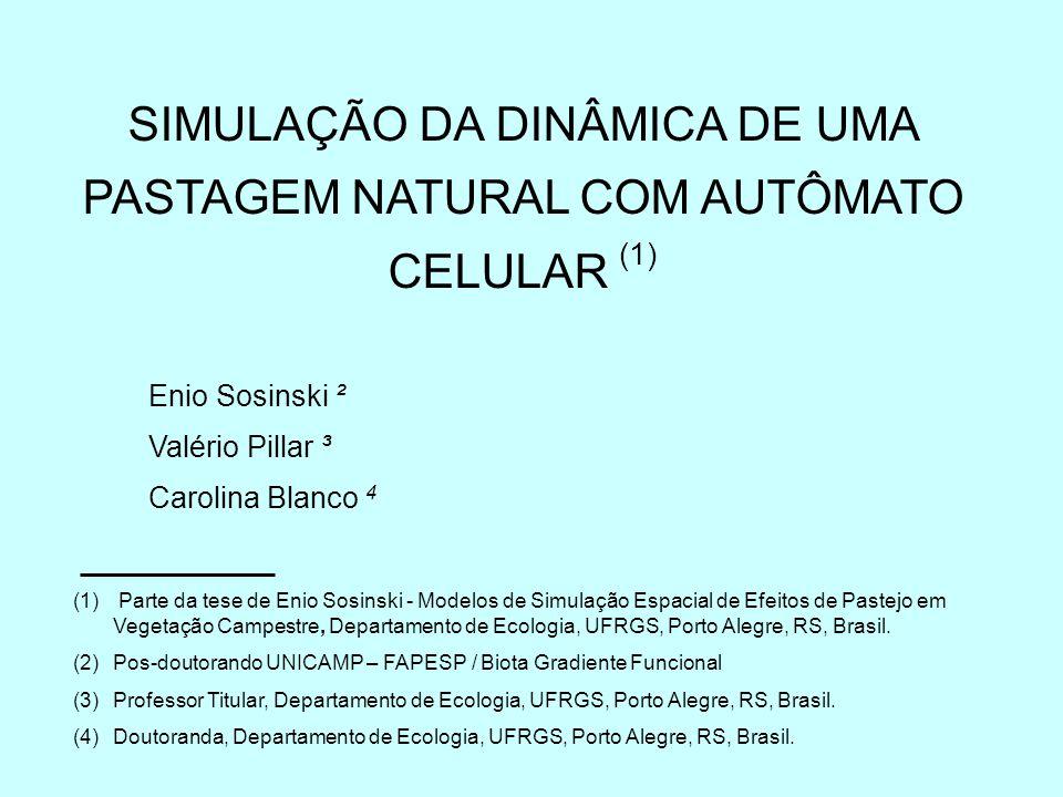 SIMULAÇÃO DA DINÂMICA DE UMA PASTAGEM NATURAL COM um modelo EMPÍRICO espacialmente explícito de autômato celular