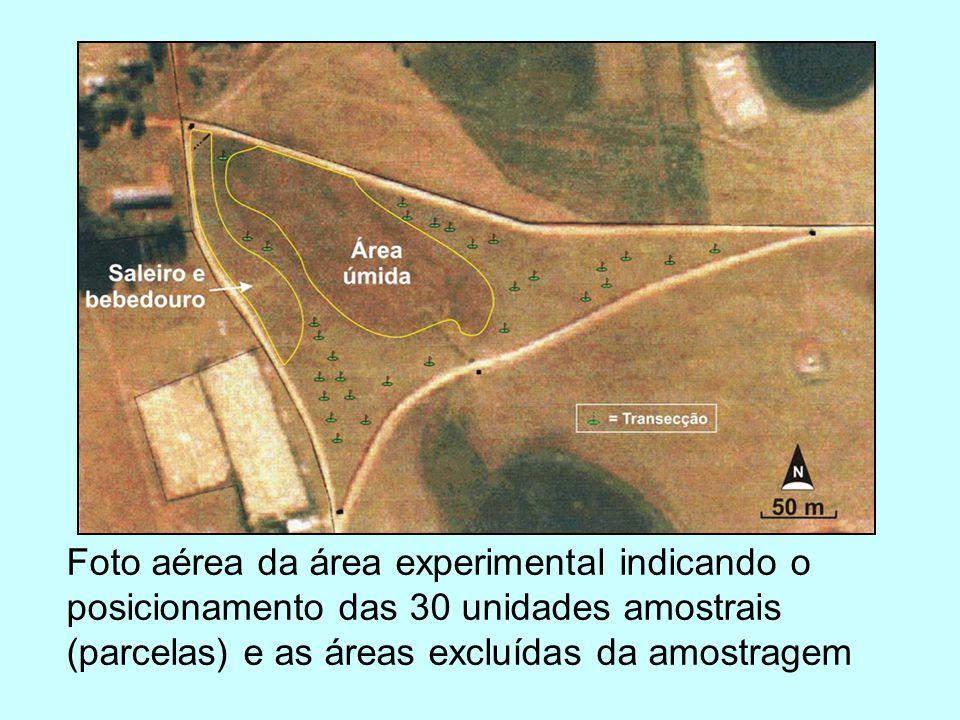 PCoA comunidades sempre pastejadas indicadas pela época do levantamento (1.