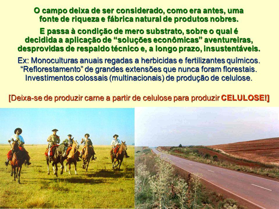 O campo deixa de ser considerado, como era antes, uma fonte de riqueza e fábrica natural de produtos nobres. E passa à condição de mero substrato, sob