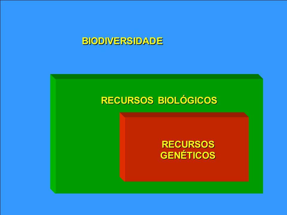 RECURSOS BIOLÓGICOS RECURSOS RECURSOS GENÉTICOS GENÉTICOS BIODIVERSIDADE
