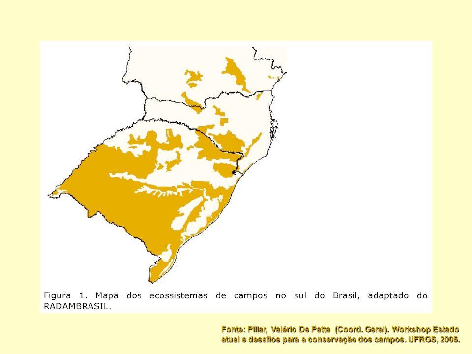 Fonte: Pillar, Valério De Patta (Coord. Geral). Workshop Estado atual e desafios para a conservação dos campos. UFRGS, 2006.