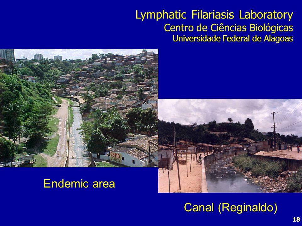 18 Endemic area Canal (Reginaldo) Lymphatic Filariasis Laboratory Centro de Ciências Biológicas Universidade Federal de Alagoas