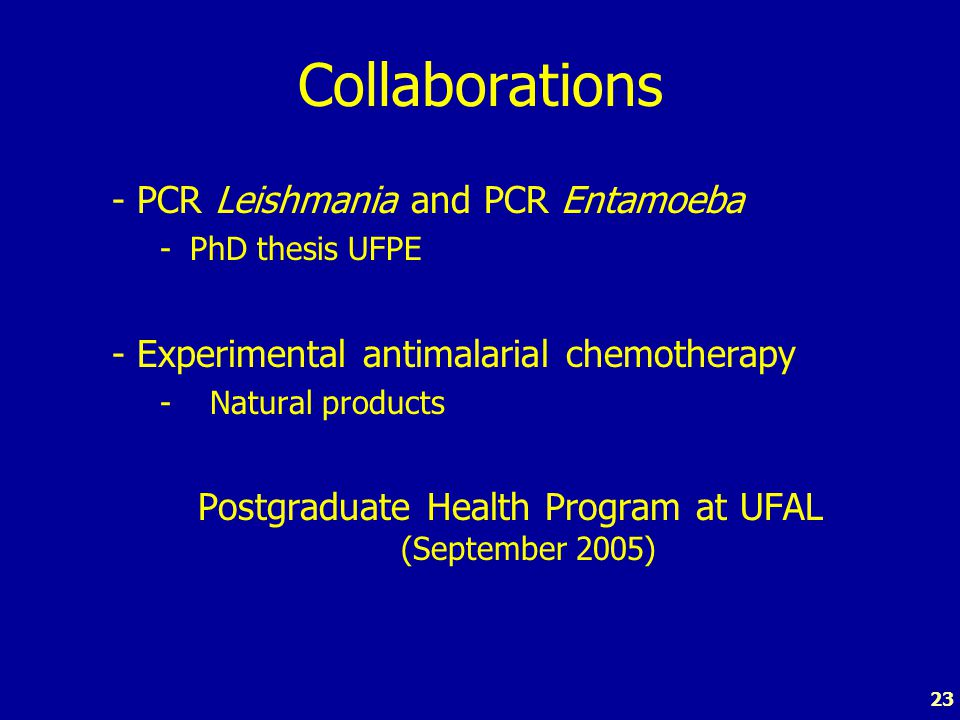 23 Collaborations - PCR Leishmania and PCR Entamoeba -PhD thesis UFPE - Experimental antimalarial chemotherapy - Natural products Postgraduate Health Program at UFAL (September 2005)