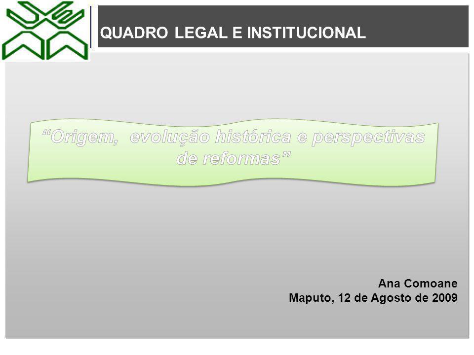 QUADRO LEGAL E INSTITUCIONAL Ana Comoane Maputo, 12 de Agosto de 2009