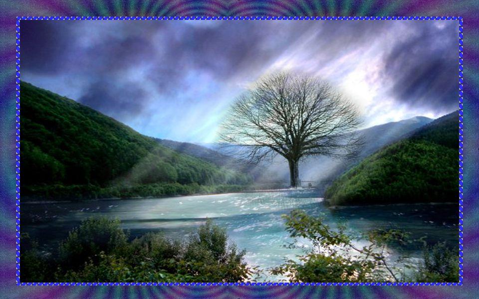 A vertigem da posse avassala a maioria das criaturas na Terra. A vida simples, condição da felicidade relativa que o planeta pode oferecer, foi esquec
