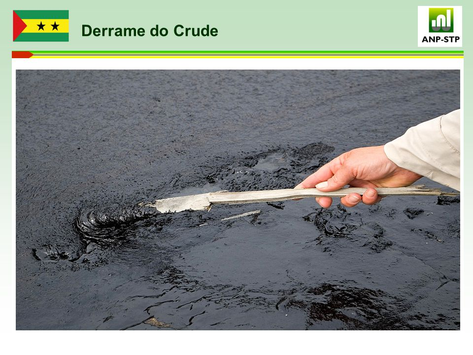 Derrame do Crude