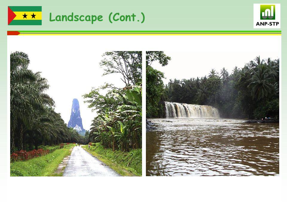 Landscape (Cont.)
