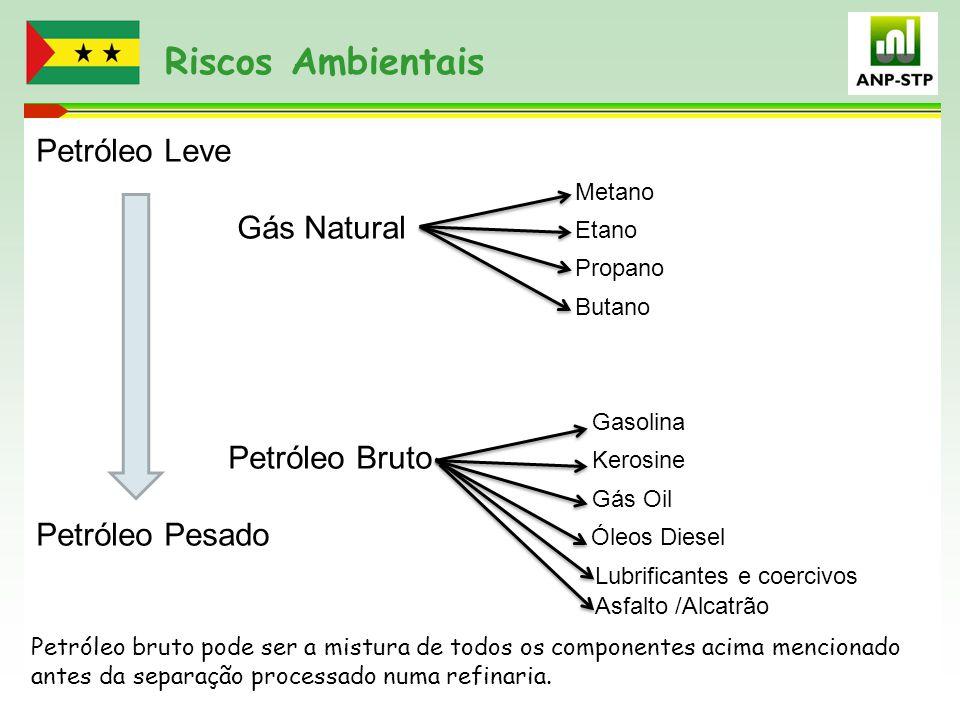 Riscos Ambientais Petróleo Leve Metano Gás Natural Etano Propano Butano Gasolina Petróleo Bruto Kerosine Gás Oil Petróleo Pesado Óleos Diesel Lubrific