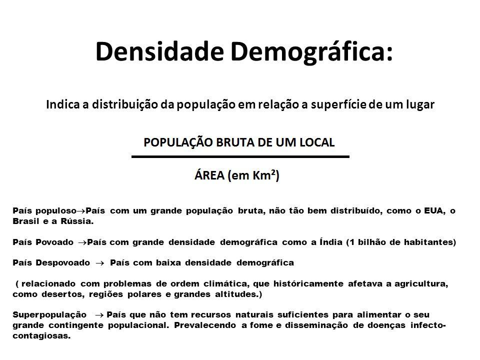 Densidade Demográfica: Indica a distribuição da população em relação a superfície de um lugar País populoso  País com um grande população bruta, não