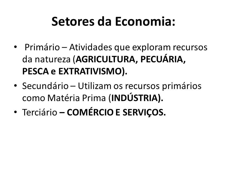 Setores da Economia: Primário – Atividades que exploram recursos da natureza (AGRICULTURA, PECUÁRIA, PESCA e EXTRATIVISMO). Secundário – Utilizam os r