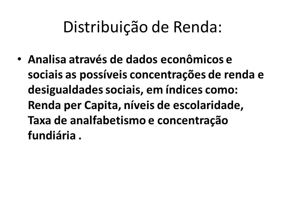 Distribuição de Renda: Analisa através de dados econômicos e sociais as possíveis concentrações de renda e desigualdades sociais, em índices como: Ren