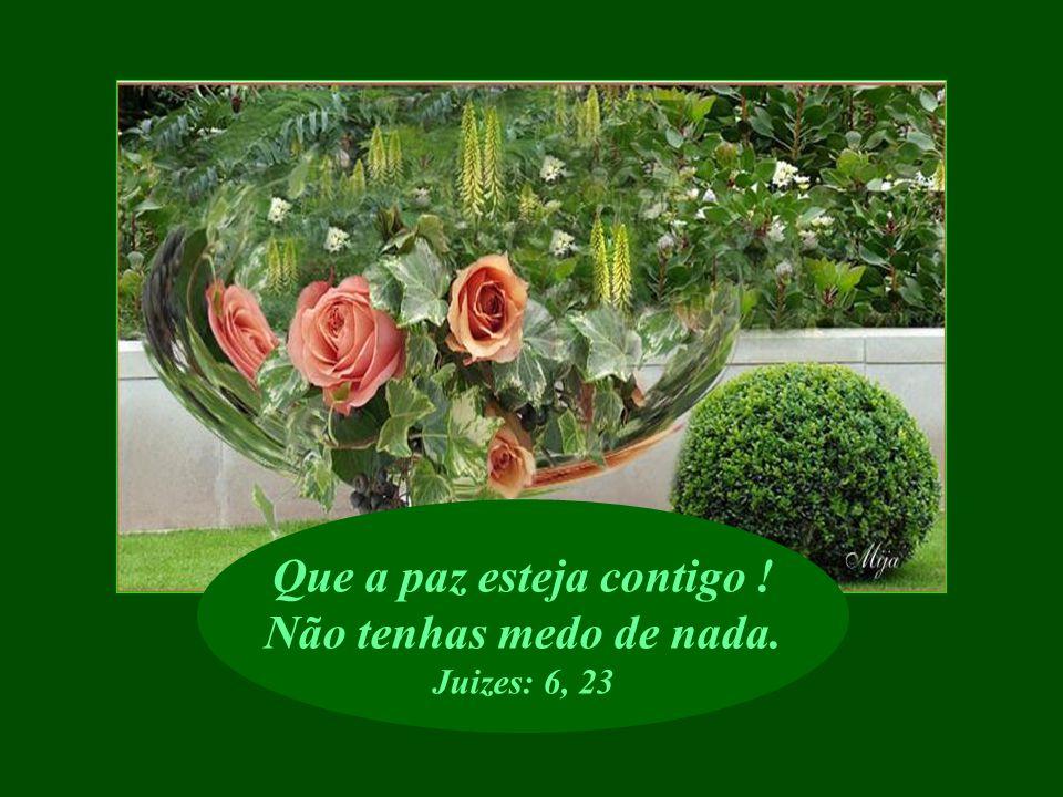 Ele reconforta aqueles que perderam a esperança. Eclesiástico: 17, 24