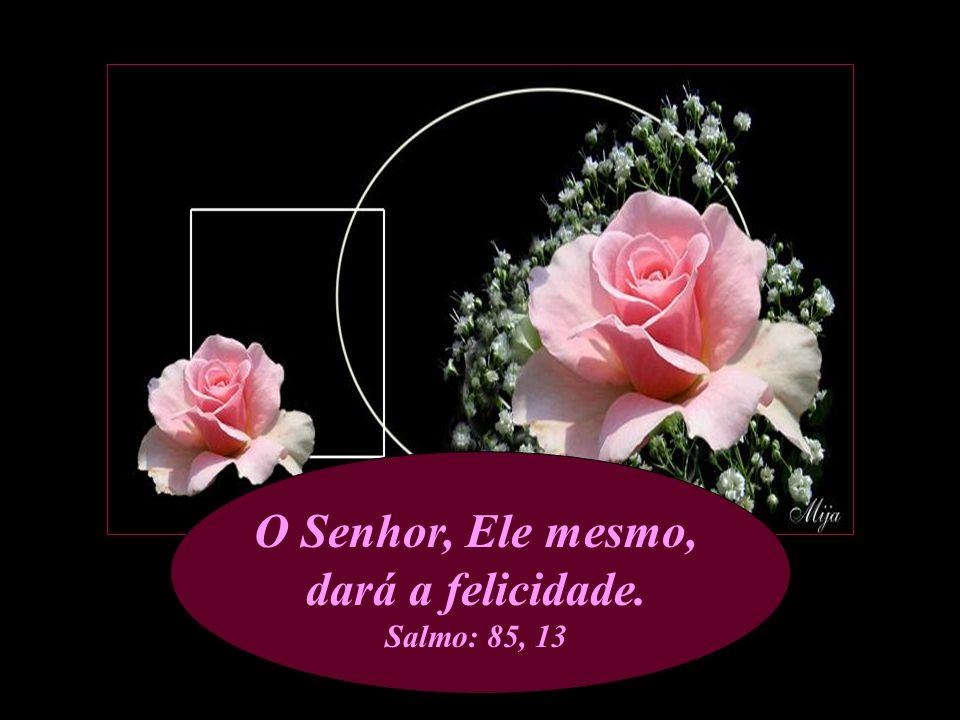 Jesus disse-lhe: 'Hoje a salvação, entrou na tua casa'. Lucas: 19, 9