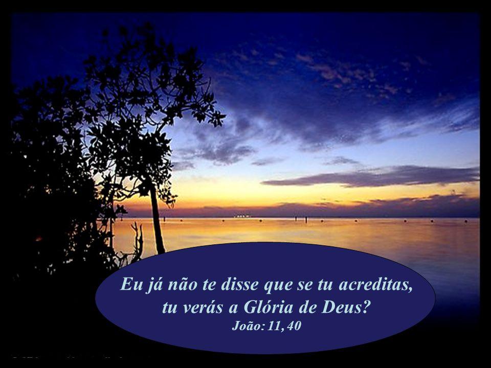 Eu já não te disse que se tu acreditas, tu verás a Glória de Deus? João: 11, 40