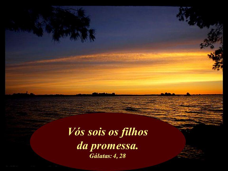 Vós sois os filhos da promessa. Gálatas: 4, 28