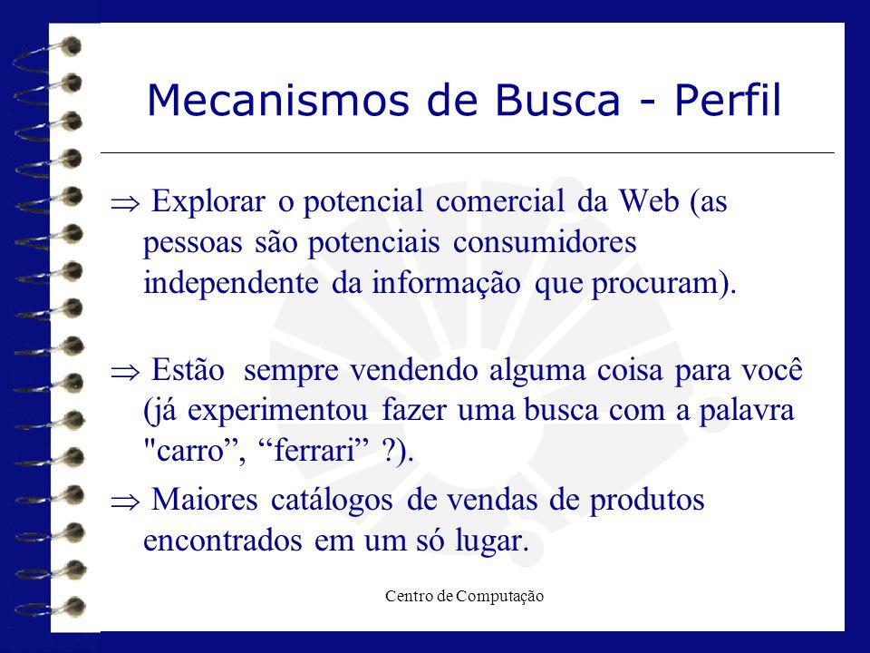 Centro de Computação Mecanismos de Busca - Perfil  Explorar o potencial comercial da Web (as pessoas são potenciais consumidores independente da info