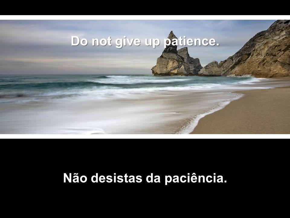 Não desistas da paciência. Não creias em realização sem esforço.