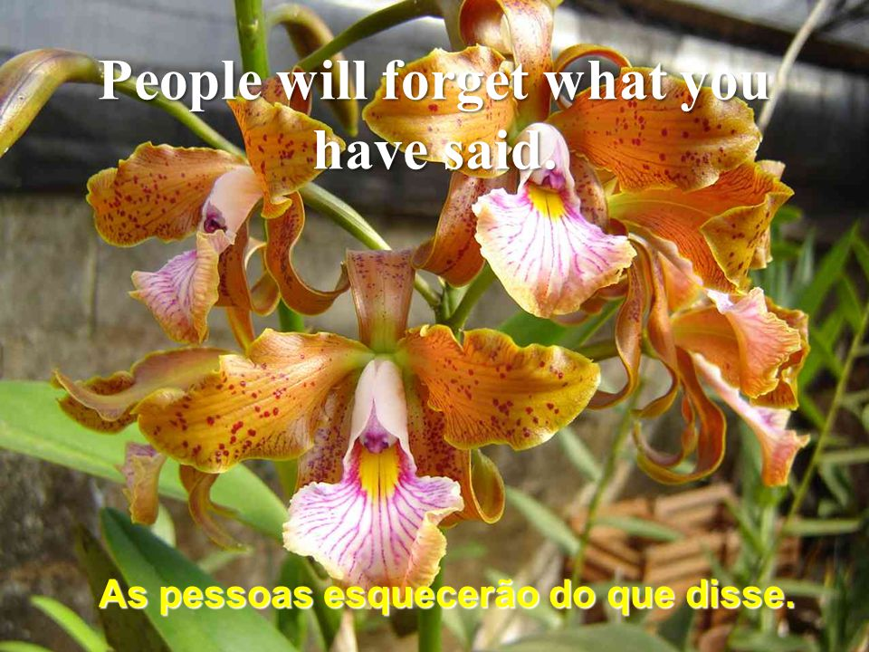 Aprendi que ainda tenho muito que aprender. I have learned that I still have much to learn.