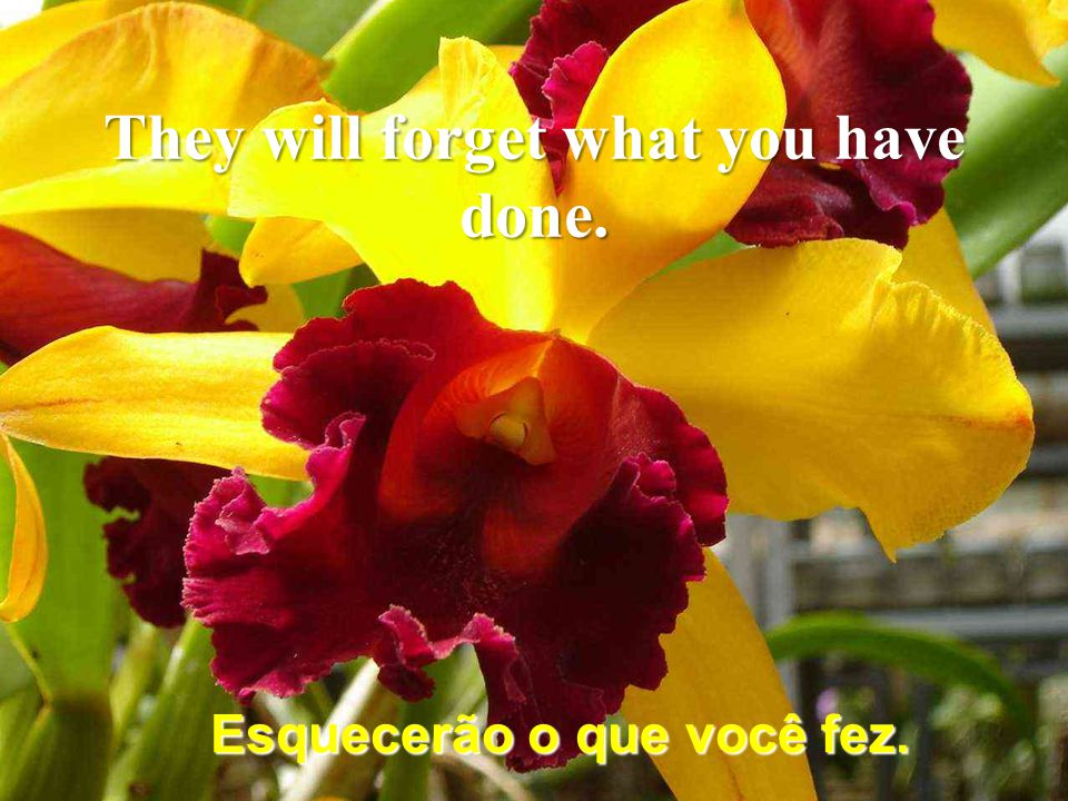 As pessoas esquecerão do que disse. People will forget what you have said.