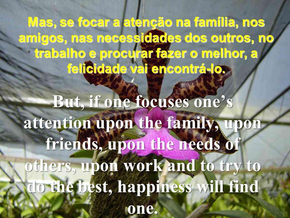 Mas, se focar a atenção na família, nos amigos, nas necessidades dos outros, no trabalho e procurar fazer o melhor, a felicidade vai encontrá-lo.