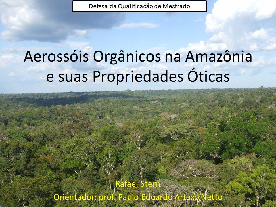 Aerossóis Orgânicos na Amazônia e suas Propriedades Óticas Rafael Stern Orientador: prof.