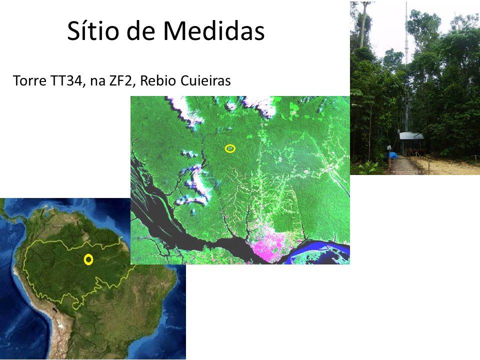 Sítio de Medidas Torre TT34, na ZF2, Rebio Cuieiras