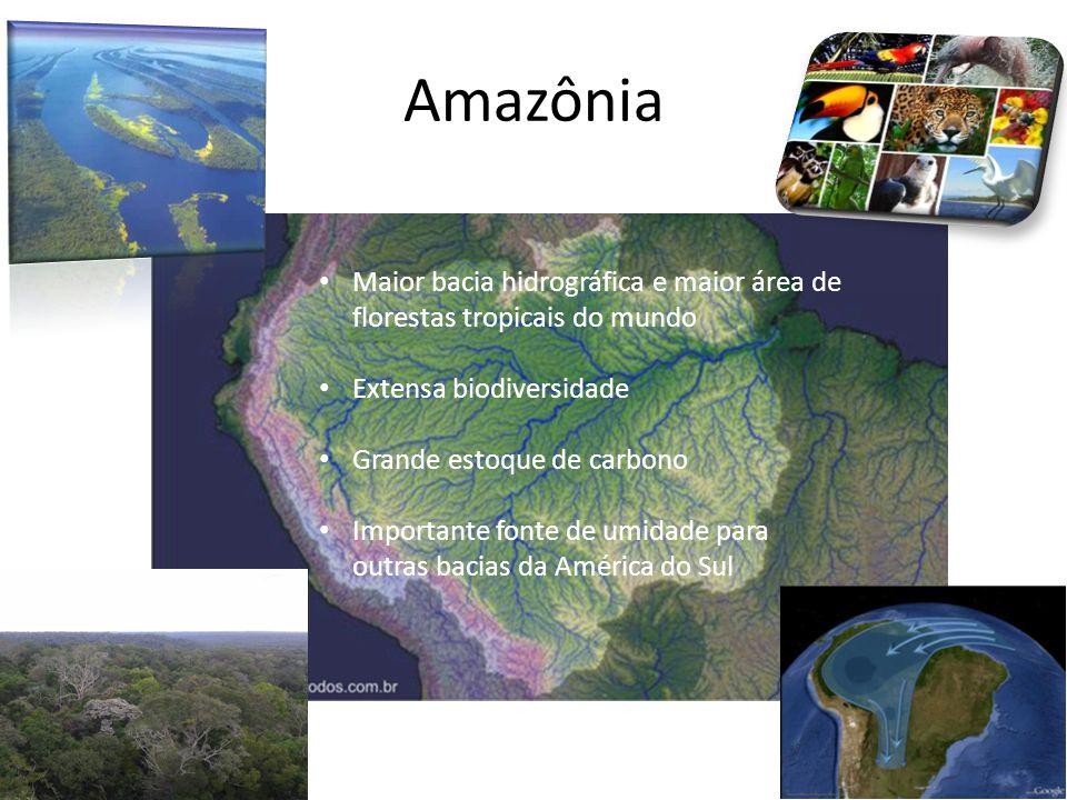 Amazônia Maior bacia hidrográfica e maior área de florestas tropicais do mundo Extensa biodiversidade Grande estoque de carbono Importante fonte de umidade para outras bacias da América do Sul