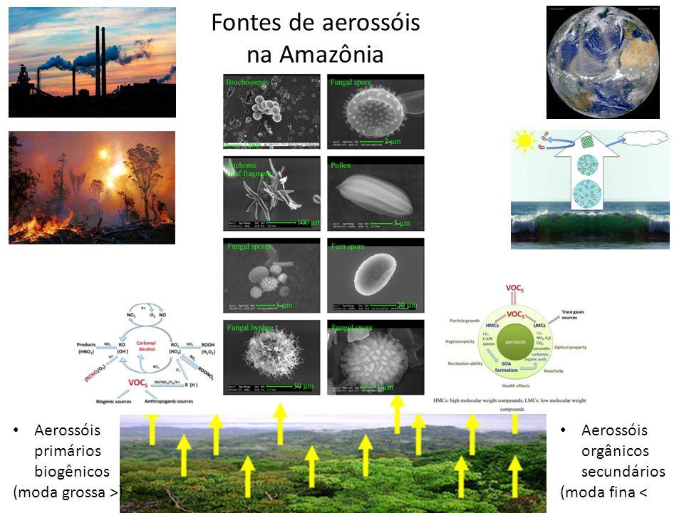 Fontes de aerossóis na Amazônia Aerossóis primários biogênicos (moda grossa >) Aerossóis orgânicos secundários (moda fina <