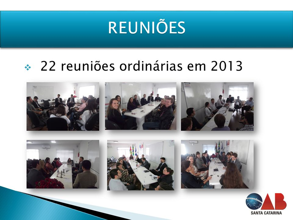  22 reuniões ordinárias em 2013