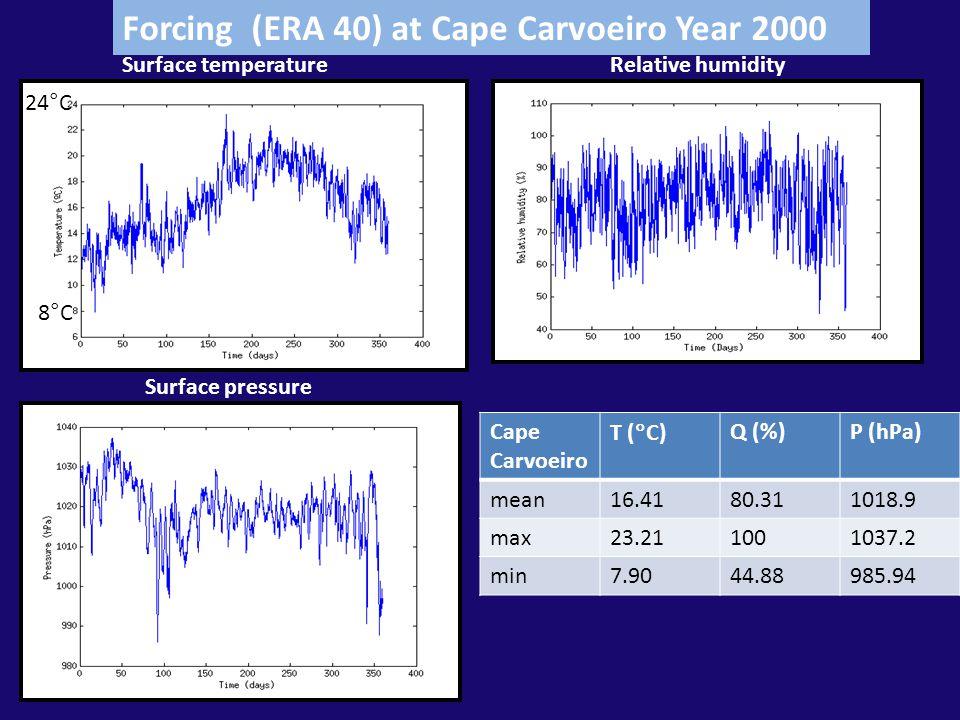 Shortwave radiationSurface wind Year 2000 Cape Carvoeiro Uwind (m/s) Vwind (m/s) Swrad (W/m2) mean1.31-2.70155.48 max12.6419.18648.62 min-10.13-14.400 Forcing (ERA 40) Cape Carvoeiro Year 2000