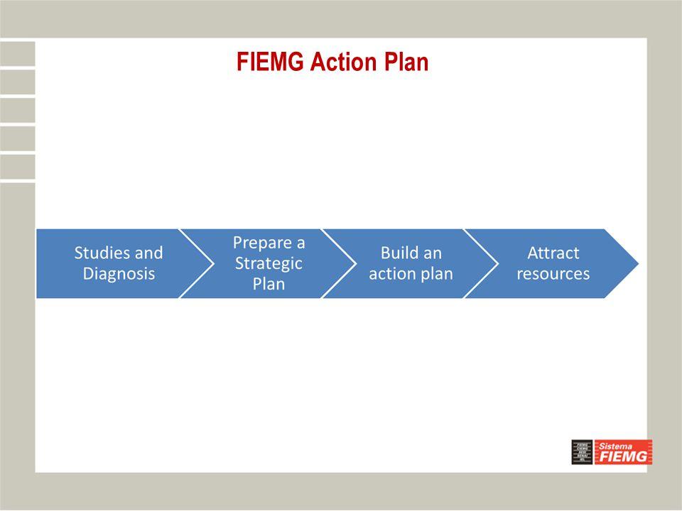 FIEMG Action Plan