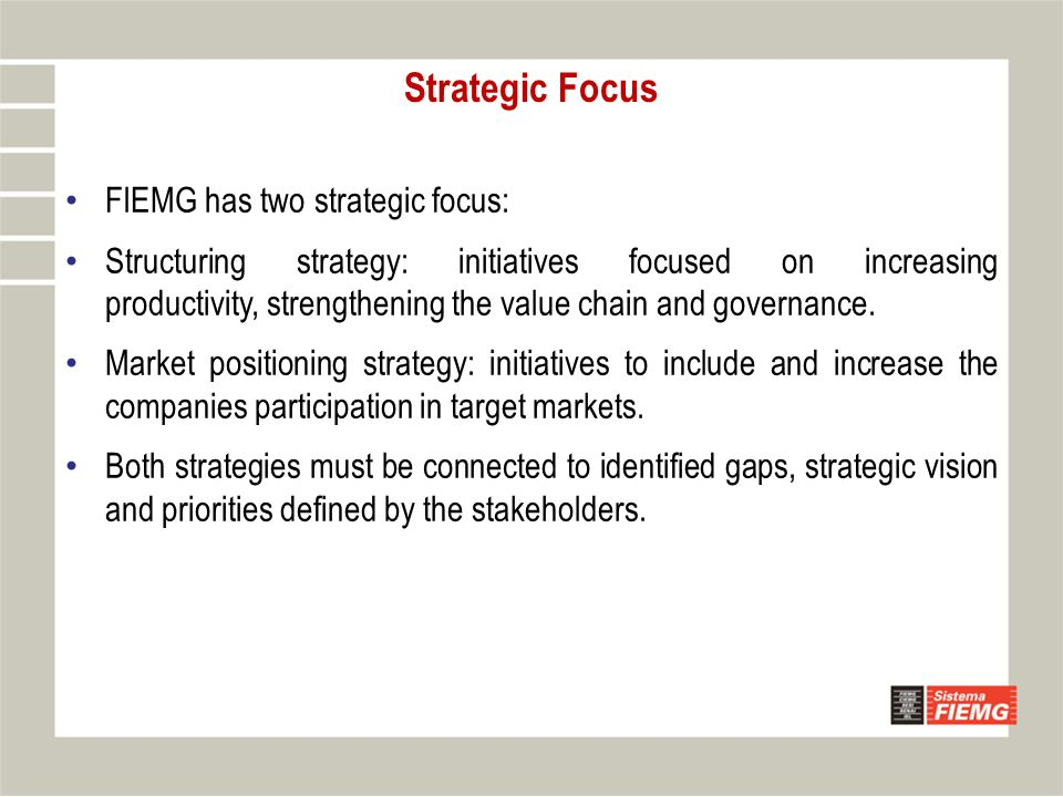 Strategic Focus FIEMG has two strategic focus: Structuring strategy: initiatives focused on increasing productivity, strengthening the value chain and