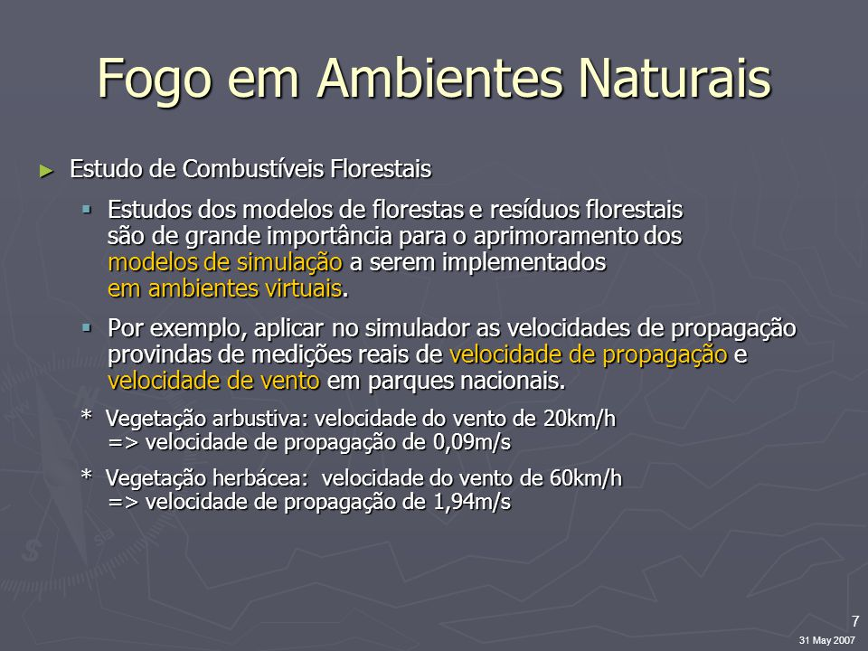 7 31 May 2007 Fogo em Ambientes Naturais ► Estudo de Combustíveis Florestais  Estudos dos modelos de florestas e resíduos florestais são de grande importância para o aprimoramento dos modelos de simulação a serem implementados em ambientes virtuais.