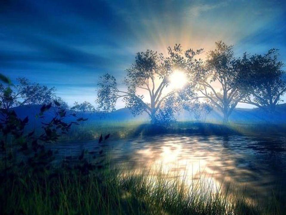 Meu Deus, que uma centelha da tua caridade brilhe nas nossas trevas e que a aurora da paz brilhe neste ano.