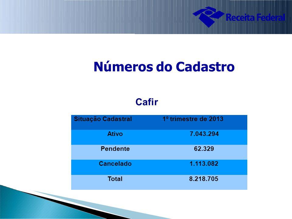 Números do Cadastro Cafir Situação Cadastral 1º trimestre de 2013 Ativo 7.043.294 Pendente 62.329 Cancelado 1.113.082 Total 8.218.705