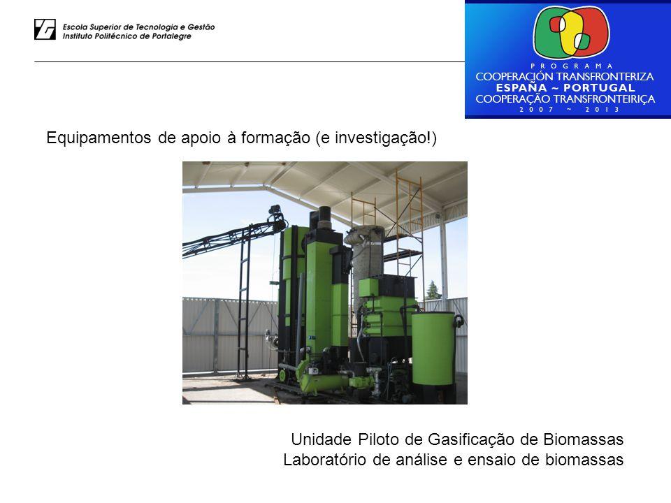Luiz Rodrigues – ESTG do IPP Equipamentos de apoio à formação (e investigação!) Unidade Piloto de Gasificação de Biomassas Laboratório de análise e en