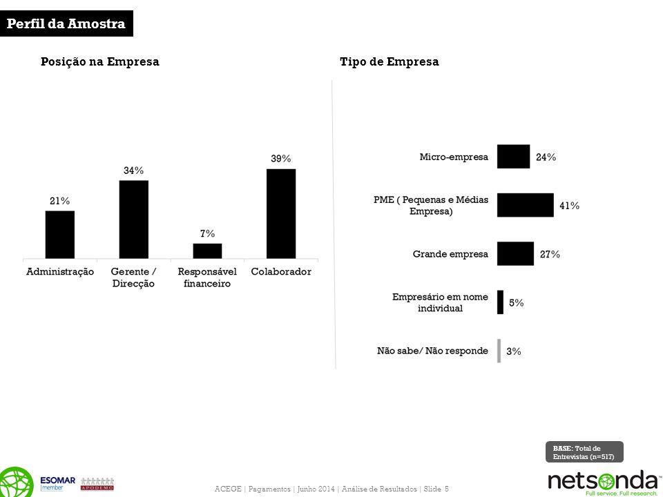 ACEGE | Pagamentos | Junho 2014 | Análise de Resultados | Slide 5 Posição na Empresa Perfil da Amostra Tipo de Empresa BASE: Total de Entrevistas (n=517)